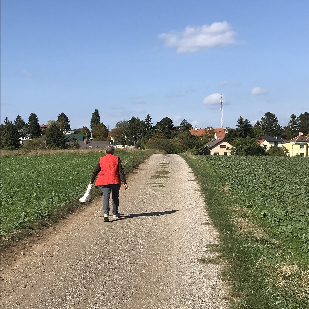 Weg zur Heimkehrersiedlung