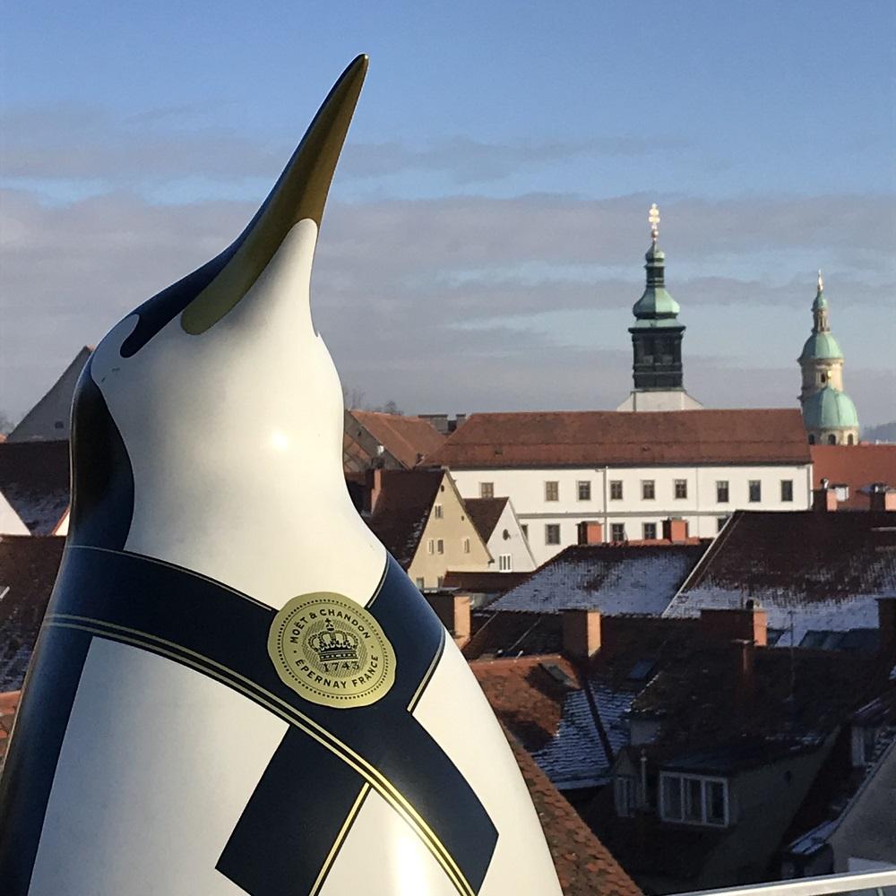 """Blick von der Terrasse des """"Freiblick"""" zum Dom"""