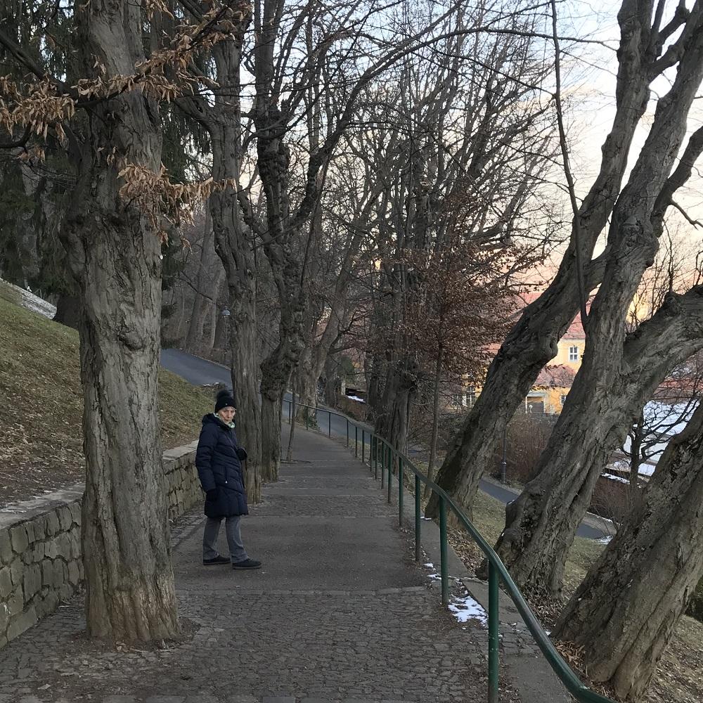 Abstieg Richtung Osten in die Altstadt