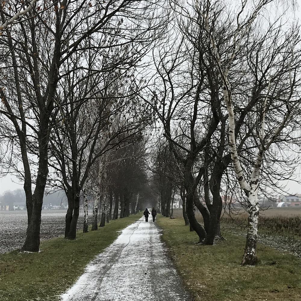 Triestingau Radweg.