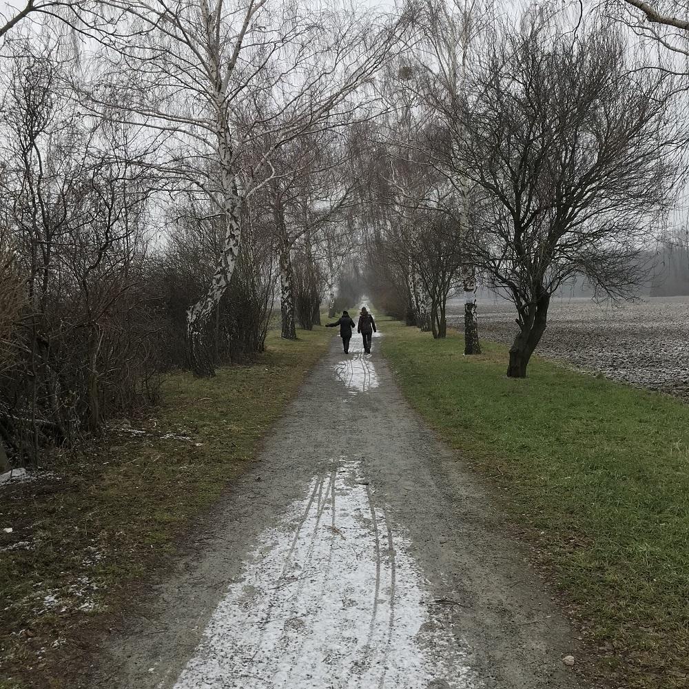 Weg nach Dornau
