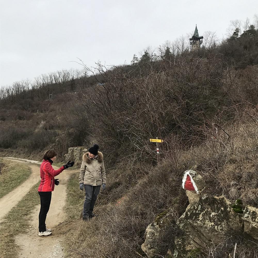 Gipfel des Heiligenstein