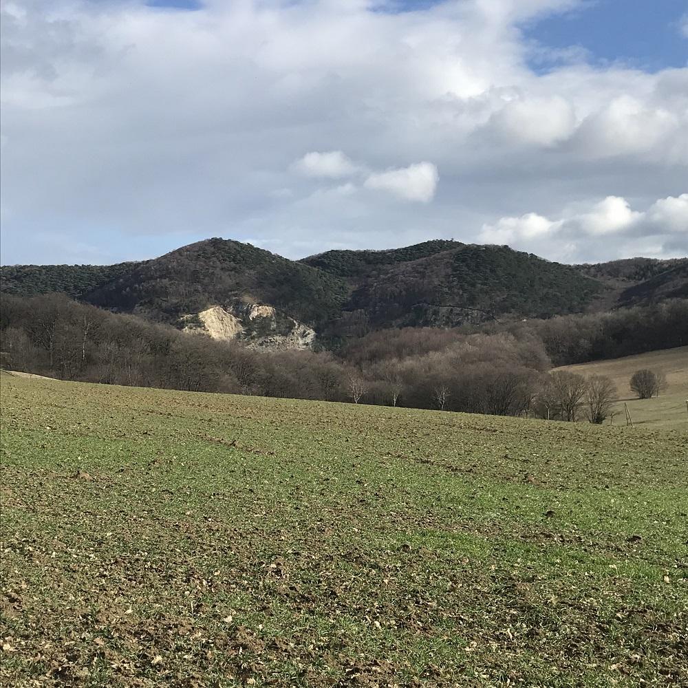 Blick von der Wiener Hütte zum Anmarschweg über die Föhrenberge