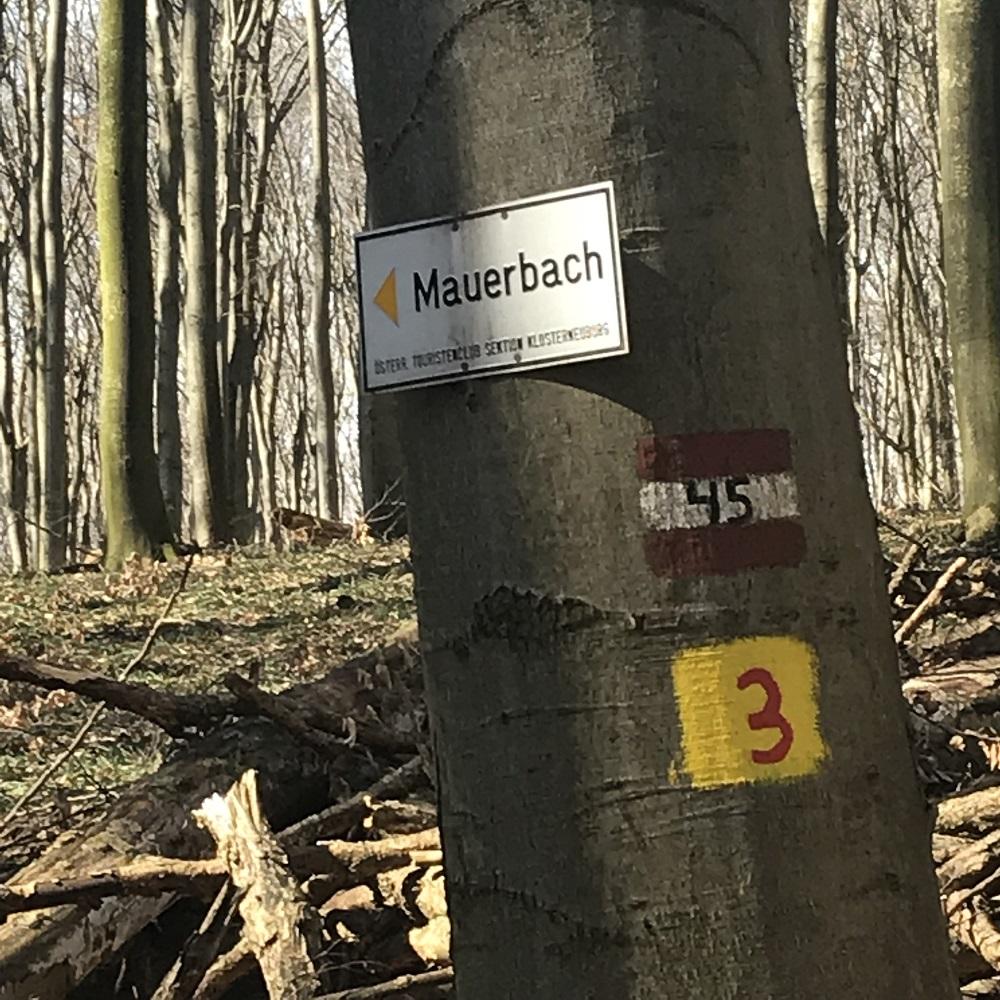 Markierung zurück nach Mauerbach