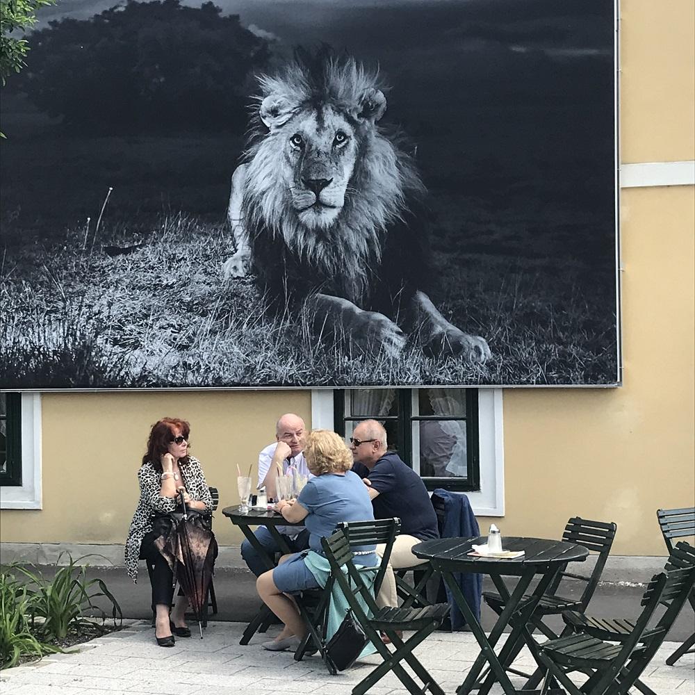 Cafe-Konditorei Ullmann